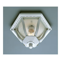 Trans Globe Lighting The Standard 1 Light Outdoor Flush Mount in White 4558-WH