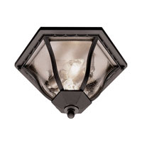 Trans Globe Lighting The Standard 2 Light Outdoor Flush Mount in Black 4559-BK
