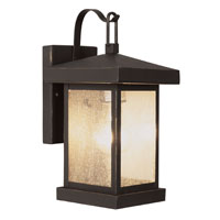 Traditional Seeded 1 Light 12 inch Weathered Bronze Outdoor Wall Lantern