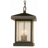 Traditional Seeded 2 Light 8 inch Weathered Bronze Outdoor Hanging Lantern