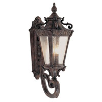 Trans Globe Roubaix 4 Light Outdoor Wall Lantern in Patina 4840-PA