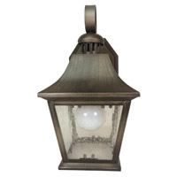 Trans Globe Lighting 4871-AN Ridgecrest 1 Light 11 inch Antique Nickel Outdoor Wall Lantern photo thumbnail