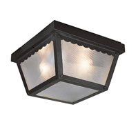 Trans Globe Lighting The Standard 2 Light Outdoor Flush Mount in Black 4902-BK