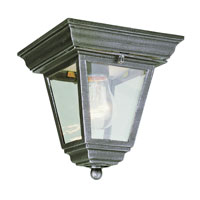 Trans Globe Lighting The Standard 1 Light Outdoor Flush Mount in Swedish Iron 4903-SWI