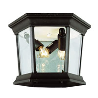 Trans Globe Lighting The Standard 3 Light Outdoor Flush Mount in Black 4904-BK