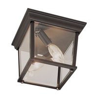 Trans Globe Lighting The Standard 2 Light Outdoor Flush Mount in Rust 4905-RT