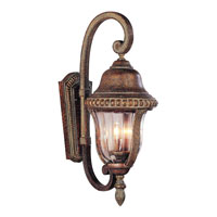 Trans Globe Lighting New American 2 Light Outdoor Hanging Lantern in Antique Bronze 4921-ABZ