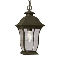Trans Globe Signature 1 Light Outdoor Hanging Lantern in Black 4974-BK