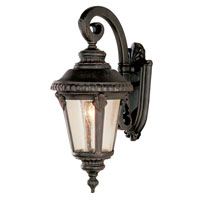 Trans Globe Lighting Estate 1 Light Outdoor Wall Lantern in Rust 5043-RT