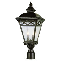 Trans Globe Braided 2 Light Post Lantern in Burnished Bronze 50513-BRB