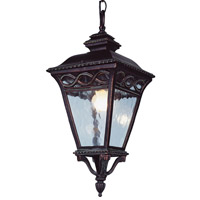 Braided 2 Light 12 inch Burnished Bronze Outdoor Hanging Lantern