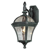 Trans Globe Lighting Classic 1 Light Outdoor Wall Lantern in Verde Green 5081-VG