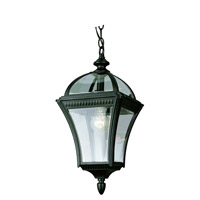 Trans Globe Signature 1 Light Outdoor Hanging Lantern in Black 5086-BK