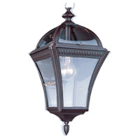 Trans Globe Lighting 5086-RT Washington 1 Light 11 inch Rust Outdoor Hanging Lantern