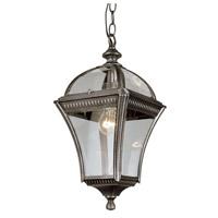 Trans Globe Lighting 5086-SWI Washington 1 Light 11 inch Swedish Iron Outdoor Hanging Lantern