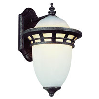 Trans Globe Lighting Coastal 1 Light Outdoor Wall Lantern in Antique Pewter 5110-AP