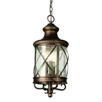 Trans Globe Lighting Coastal 4 Light Outdoor Hanging Lantern in Antique Copper 5126-AC