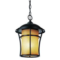 Trans Globe Lighting Craftsman 1 Light Outdoor Hanging Lantern in Weathered Bronze 5252-WB