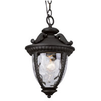 Trans Globe Lighting Villa 1 Light Outdoor Hanging Lantern in Black 5273-BK photo thumbnail