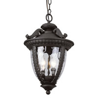 Trans Globe Lighting Villa 2 Light Outdoor Hanging Lantern in Black 5275-BK photo thumbnail