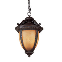 Trans Globe Lighting Villa 2 Light Outdoor Hanging Lantern in Burnt Sienna 5275-BS