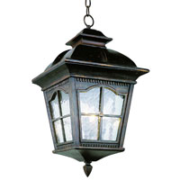 Trans Globe Lighting New American 3 Light Outdoor Hanging Lantern in Antique Rust 5421-AR