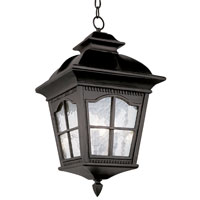 Trans Globe Chesapeake 3 Light Outdoor Hanging Lantern in Black 5421-BK