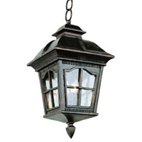 Trans Globe Lighting New American 4 Light Outdoor Hanging Lantern in Antique Rust 5426-AR