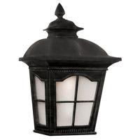 Trans Globe Lighting 5429-1-BK Briarwood 2 Light 16 inch Black Outdoor Pocket Lantern