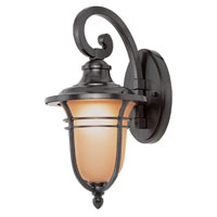Amber Rain 1 Light 14 inch Rubbed Oil Bronze Outdoor Wall Lantern
