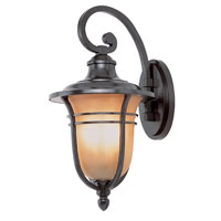Amber Rain 1 Light 17 inch Rubbed Oil Bronze Outdoor Wall Lantern