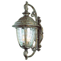 Trans Globe Lighting Villa 2 Light Outdoor Wall Lantern in Burnished Rust 5901-BRT