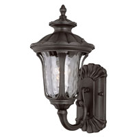 Rustic Contemporary 1 Light 15 inch Rust Outdoor Wall Lantern