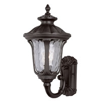 Rustic Contemporary 1 Light 19 inch Black Outdoor Wall Lantern