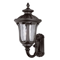 Trans Globe Rustic Contemporary 1 Light Outdoor Wall Lantern in Black 5912-BK