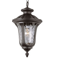 Rustic Contemporary 1 Light 11 inch Black Outdoor Pendant
