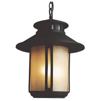 Trans Globe Lighting Craftsman 2 Light Outdoor Hanging Lantern in Black 5956-BK