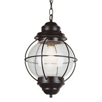 Trans Globe Lighting Coastal 1 Light Outdoor Hanging Lantern in Black 69903-BK