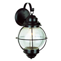 Trans Globe Onion 1 Light Outdoor Wall Lantern in Black 69904-BK