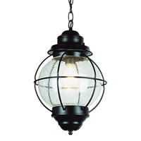 Trans Globe Signature 1 Light Outdoor Hanging Lantern in Black 69906-BK
