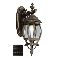 Outdoor Electric Lantern Lights