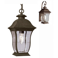 Trans Globe Lighting 4974-WB Signature 1 Light 7 inch Weathered Bronze Outdoor Hanging Lantern