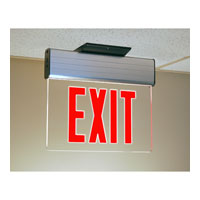 Trans Globe Lighting 1 Light Safety Light in Clear EXIT-4531