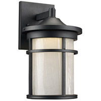 Avalon LED 11 inch Black Outdoor Wall Lantern