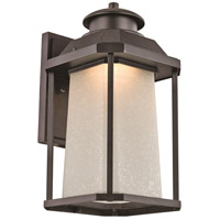 Southfield LED 17 inch Black Outdoor Wall Lantern