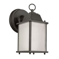Trans Globe Lighting Energy Efficient 1 Light Outdoor Wall Lantern in Black PL-40455-BK