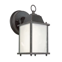 Trans Globe Lighting Energy Efficient 1 Light Outdoor Wall Lantern in Rust PL-40455-RT