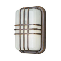 Trans Globe Lighting Energy Efficient Outdoor 1 Light Outdoor Wall Lantern in Rust PL-41104-RT