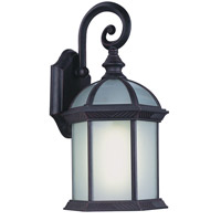 Botanica 1 Light 8 inch Black Outdoor Wall Lantern