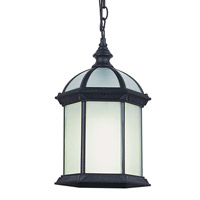 Trans Globe Botanica 1 Light Outdoor Pendant in Black PL-4183-BK